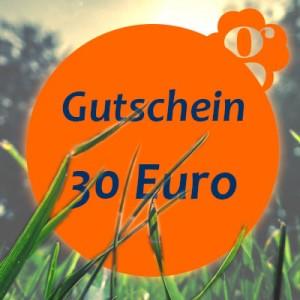 Gutschein-30-Euro